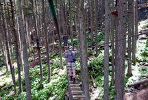 Aerial Trekking Course