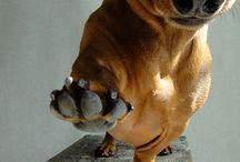 animalsssss!!!!!!!