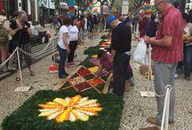 Madeira Island Flower Festival / Flower festival 2015
