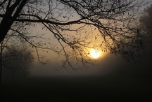 Beautiful Scenery / by Teresa Roll