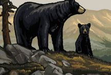 Pictures with bears / Here we put interesting and pritty  pictures