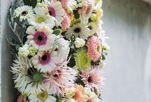 Sweet Christmas / Small pink and white gerberas that provides you an wonderful Christmas