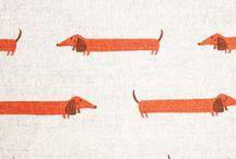 Dachshund | Tax / A board concerning everything dachshund.