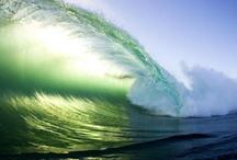 Surf  / Surfer Girl