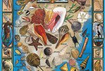 Seashore Jigsaw Puzzles