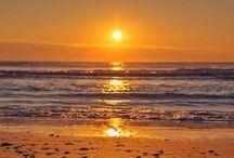 Sun Gold Coast
