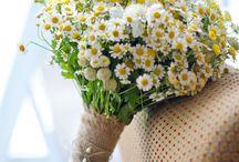 dekorácie, kytice..