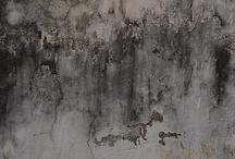 decay. / by Alexandra Ribar