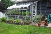Garage & Greenhouse / by Shelley Cole