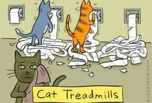 Fitness Funnies / Anything funny about working out, eating healthy or learning to try to stay fit