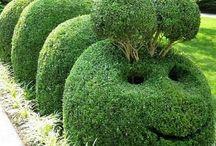 Szép kert / Szép, rendezett kert Nice garden, schön garten Vicces, poénos