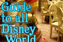 Alec <3 | Disney Honeymoon