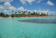 Guadeloupe / Guadeloupe - France