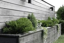 Garden inpiration