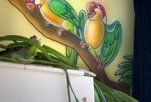 muurschildereringen
