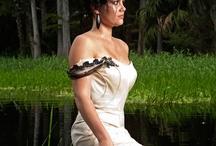 photog::trash.the.dress