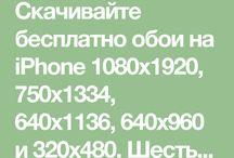 Iphone nastenka