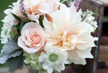 Svatba 2.9. Růžová-mint