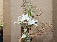 Drift wood arrangement