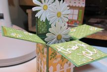 pop up box cards
