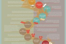 How are kids clothes made? Seed to Garment / Explaining the garment production chain from cotton seed to clothes. We highlight where there are ethical & environmental concerns with the clothing industry. Infographic awesomeness.