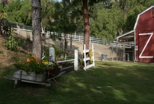 Faulkner Farm - VENUE / A charming and rustic property perfect for weddings and parties. / by LBV Weddings