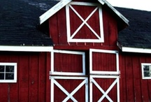 BARNS / by Sharon Chapman