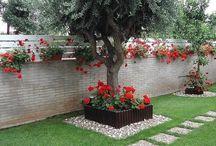 jardines pequeños