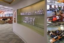 NIH / by Hotsie Totsie