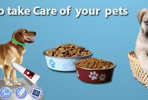 Pet care / Best tips for pet care.