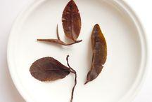 東邦紅茶 TungPang Black Tea / 1939に設立した台湾紅茶の老舗