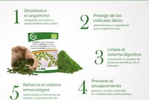 Infografías de superalimentos / Infografías sobre los beneficios que aportan los superalimentos  al organismo