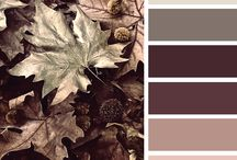 colors-interior