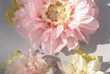 Цветы из интернетп