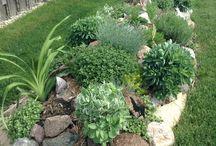 Zahrada - inspirace
