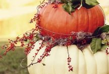 Fall Decor / by Andrea Benefield