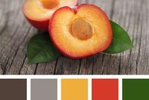 Color's