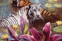 Puzzles de animales / Puzzles de animales