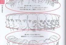 Head/Faces