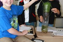STEM Teaching Resources / Resources for teaching Science, Technology, Engineering, and Math (STEM) for upper elementary and middle school
