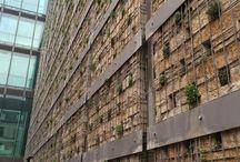 Living Walls and Green Roofs / Green roof garden design inspiration from Garden Ninja.