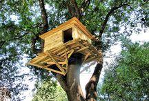 treesomes / Tree houses / by Bernardo Clericetti