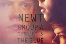 Newt;-;