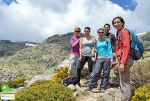 Excursion Peñalara junio 2015. Hiking Madrid. / La excursión que Hiking Madrid realizó por Peñalara en junio de 2015.