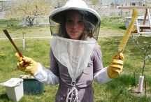Beekeeper workshops