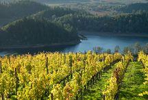 West coast wine trip