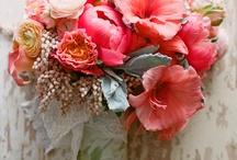 fleurs / by Julie Wilson