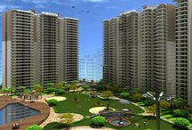 ACE Group India Sell Residential Projects In Greater Noida West / ACE Group India provides best residential project like ACE City, ACE Aspire and  ACE Platinum Greater Noida @ 91-8010001188
