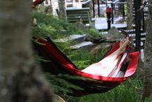 ÉTÉ / Les sens de la nature, vivez l'expérience japonaise!