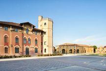 PAJARO OFFICIAL / ITALIAN LUXURY FURS